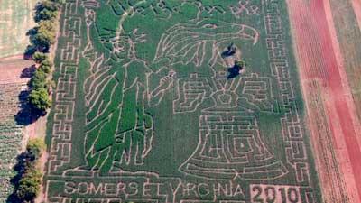Liberty Mills Farm Corn Maze