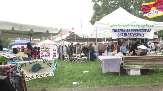 Festival of Cultures at Lee Park in Charlottesville