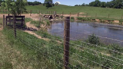 David Suratt put fencing around the streams on his property