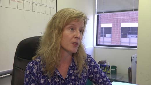 Margaret Nimmo Crowe, executive director at Voices for Virginia's Children