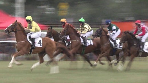 Horse racing at Foxfield in Albemarle County (FILE IMAGE)