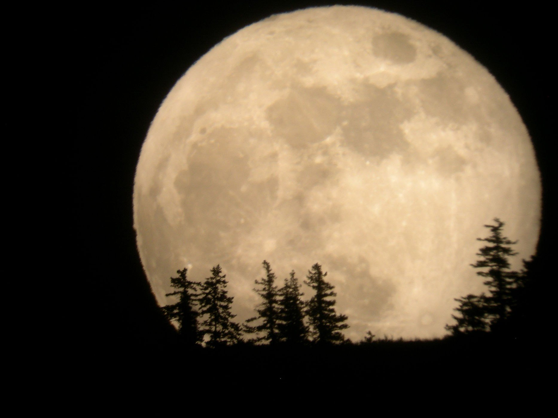 Supermoon Makes a Historic 2016 Appearance This November!