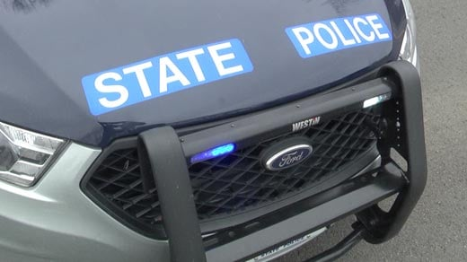 Virginia State Police (FILE IMAGE)