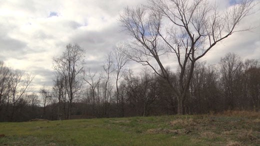 Site in Culpeper County for a proposed mosque (FILE)
