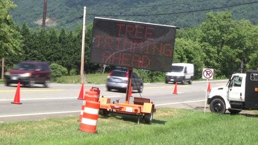 Tree trimming work along Route 250 in Albemarle County