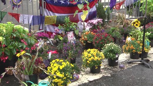 Flowers on 4th Street
