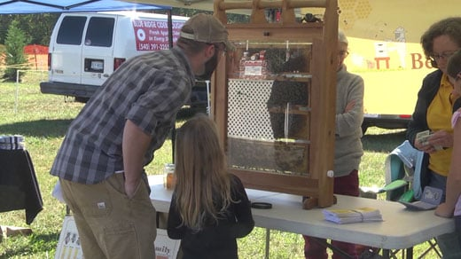 Activities for kids at the festival