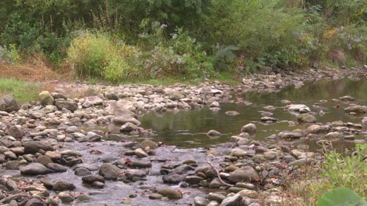 The rivers in the area are low due to the drought-like conditions