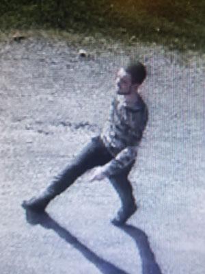 Burglary suspect in Staunton