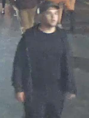 Assault and attempted abduction suspect