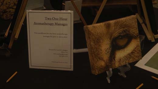 The Wildlife Center of Virginia held a gala on Nov. 4