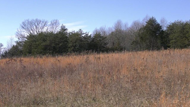 Site of a proposed affordable housing apartment project in Greene County