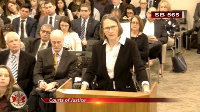 Susan Graham speaking to the Senate Courts of Justice Committee