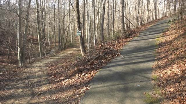 Albemarle County is looking to make improvements to its parks