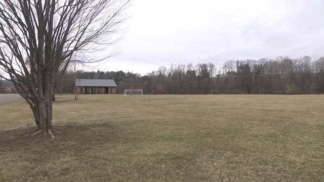 Two of the proposed fields will be artificial turf