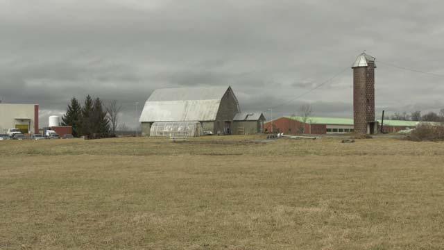 Farmland on Augusta Health's property