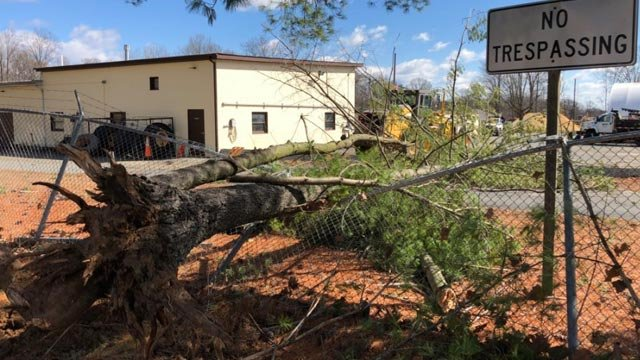 Tree falls onto the fence at VDOT's office in Madison County