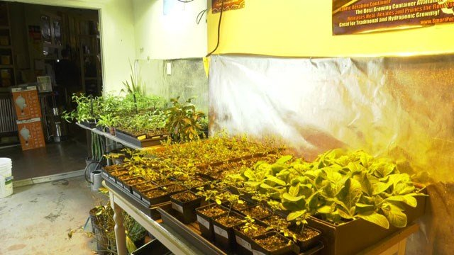 Fifth Season Gardening is located on Preston Ave