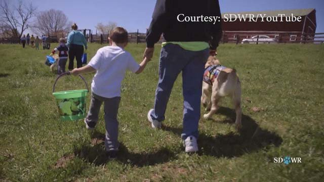 AG Herring has filed a lawsuit against a service dog company