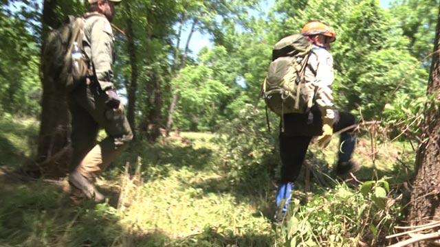 Teams searching along Ivy Creek