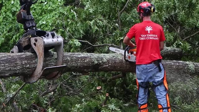 Crews cleaning up storm damage