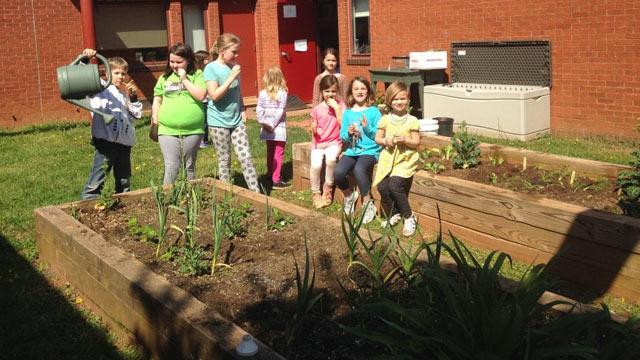 Garden at Scottsville Elementary School (Photo courtesy keepvirginiabeautiful.org)