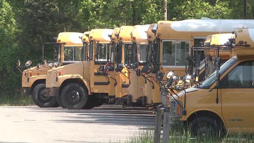 Albemarle County school buses