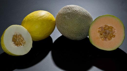 Melons, photo courtesy of wikipedia.com