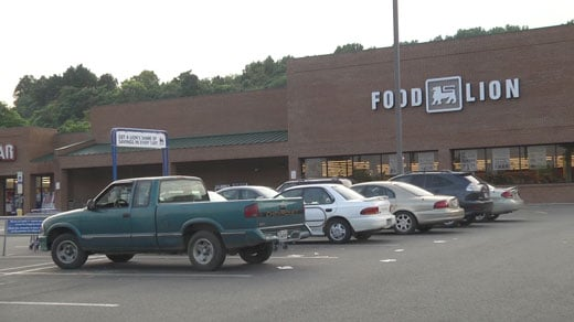 Food Lion in Lovingston