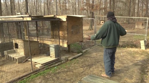 Brenton Mathis shows NBC29 where his dogs live