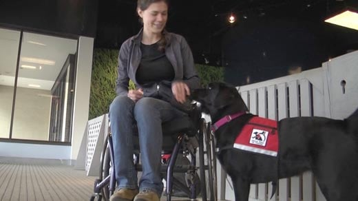 Service Dogs of Virginia