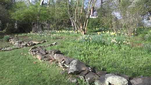 Historic Garden Week Kicks Off This Weekend - WVIR NBC29 ...