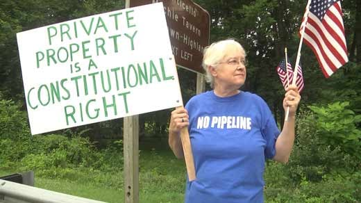 Members of the group Friends of Nelson County held a protest on Rt. 20 in Albemarle Co. Saturday.