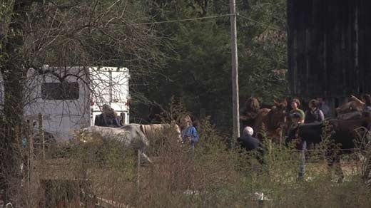File Image: Investigators, veterinarians and animal rescuers at Peaceable Farm