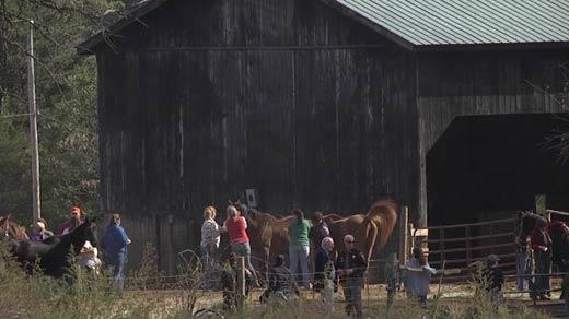 File Image: Investigators, veterinarians and animal rescuers at Peaceable Farm