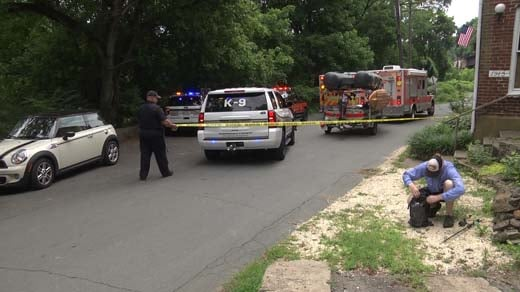 Emergency crews on the scene of a homicide in Albemarle County (FILE IMAGE)