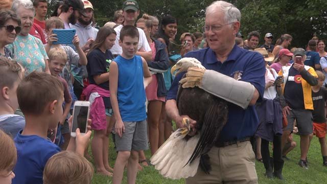 Hundreds gathered to watch the bald eagle's release