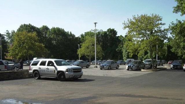 Dozens of VSP vehicles parked near Lambeth Field