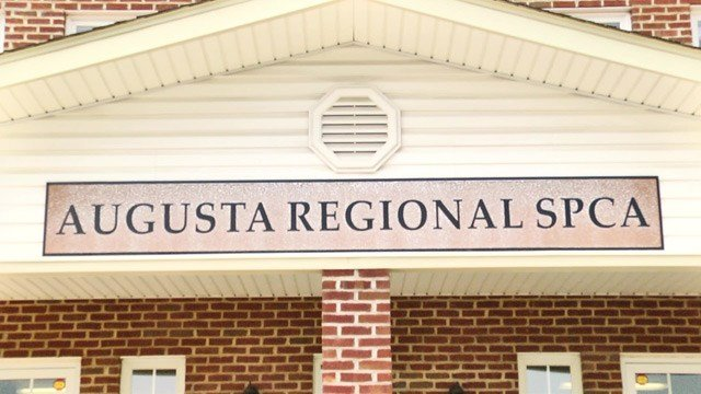 Augusta Regional SPCA is hosting a fundraising event at Gypsy Hill Park on Saturday.