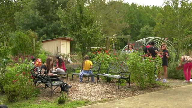 Farm to School Week in Charlottesville is Oct. 1-5