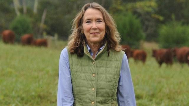 Leslie Cockburn (Courtesy lesliecockburnforcongress.com)