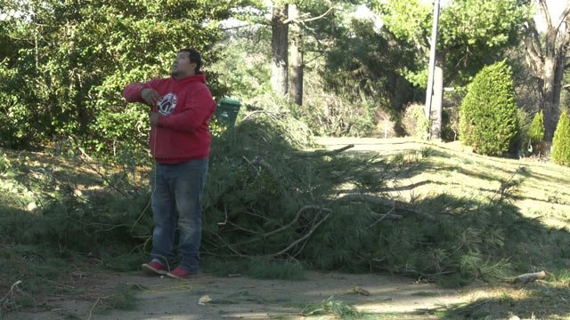 The fallen trees caused power outages across the area.