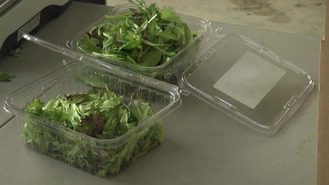 The romaine tainted with E. coli was traced back to Arizona