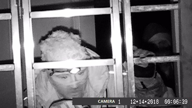 Individuals suspected of attempting to break into a Troy-area home