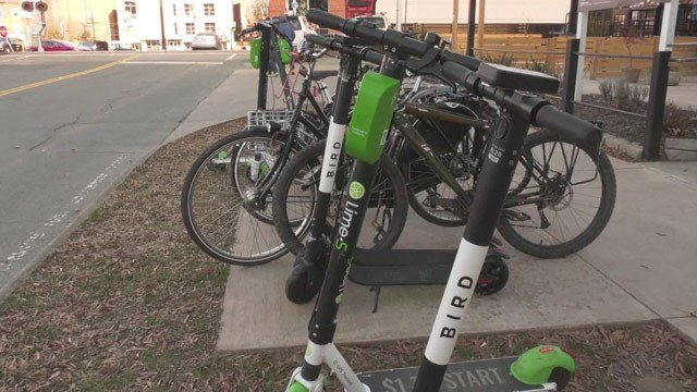 Bird and Lime electric scooters in Charlottesville