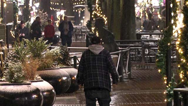 People on the Downtown Mall in Charlottesville enjoying the snow.