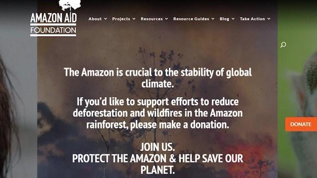 Charlottesville Nonprofit Helps Preserve, Protect Amazon Rainforest