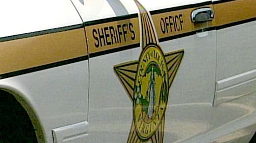 Louisa County Sheriff's Office (File Image)