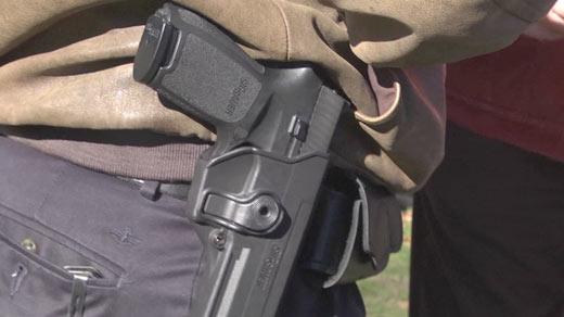 Officials to Discuss Gun Control Bills, Crozet Activist to Speak at Meeting
